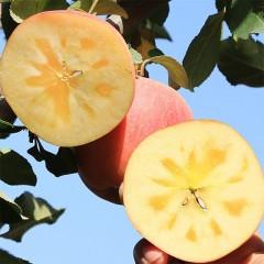 【双仓发货】阿克苏冰糖心 红旗坡冰糖心苹果 8.5斤家庭装 果径80-85mm 顺丰快递包邮